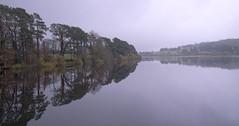 Farewell to Autumn - Misty lake (sineid2009) Tags: autumn fall colour leaves lake mist water wicklow ireland