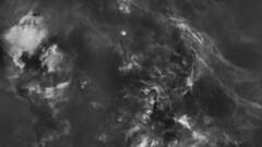 Starless Cygnus (kees scherer) Tags: ha halpha cygnus ngc7000 nebula nebulae nebulosity nevels astro astrophotography starless