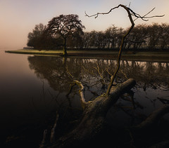 Been a while - Explored (Matthew Johnson1) Tags: frost northamptonshire welford outdoor beauty classic leading lines reflection reservoir sky water tree cold fog nobody morning light explore