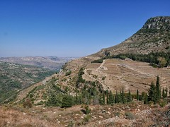 Terraced slopes near Jezzine.
