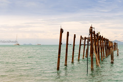 I'm Still Standing ... Thailand Pier (davidheath01) Tags: amateur amateurphotographer amateurphotography abandoned abstract art asia beauty beautiful blue beach boats color colour colors colours contrast d850 dslr digital green holiday holidays happy island kiss kohsamui knot landscape landscapephotography light lanscape nikon nikond850 nikkor nature open outside ocean old picture photography photograph photographer photo pier reflection river rope sea sky sun seascape summer seaside travels traveling travel timber travelling tree thailand rust vacation view village vintage water wood weather yacht ngc