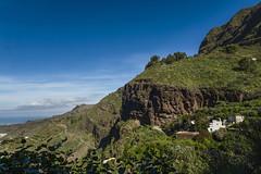 Canary islands gran canaria winter 2018_2019 04012019 1131  Kopie (Dirk Buse) Tags: lugarejos canarias spanien kanaren gran canaria landschaft grün mft m43 mu43 natur outdoor reise wanderung travel spain espana