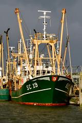 IMO 8521646 SC19 Bonafide DE 191129 Lauwersoog 1001 (Nikon Photographer NL) Tags: sc19 bonafide maritime fishing trawler nikon d500 imo8521646 lauwersoog visserij tamron