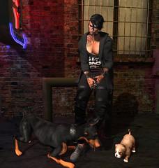 My littles dogs... (Ayashi Wolk) Tags: gabriel gacha legalinsanity rezzroom punch teabunny native modulus kibitz belleza catwa dog guy male