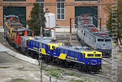 2x3 (Mariano Alvaro) Tags: 269 continental rail low cost renfe tcr villaverde locomotoras