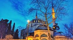 Yeni Valide Camii.. (sibeter) Tags: üsküdar istanbulturkey cami mosque minare ağaç akşam sokaklambası evening blue bluehours htcu11 htc tree türbe