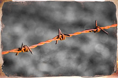 Rusty Wire (joseph_donnelly) Tags: rust rusty wire barbed pricks selective colour color border