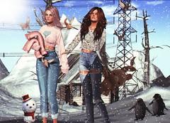 LOOK-1030:They are enjoying all the snow coming 🐧🐧 (Julia Pariz) Tags: c88 k9 n21 thearcade uber badunicorn baiastice epoch essences minahair minimal mishmish momochuu mvt prtty pseudo