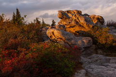 Light at Bear Rocks (Ken Krach Photography) Tags: dollysods westvirginia