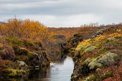 Thingvellir National Park (heldur_betur photography) Tags: thingvellirnationalpark