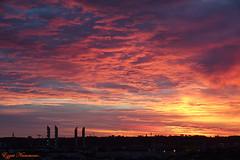 Aube et aurore sur Bordeaux (Ezzo33) Tags: aube aurore nammour ezzat ezzo33 france aquitaine 33 bordeaux ville monument ciel paysage sony rx10m3 pont matin soleil sun rouge red orange
