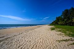 India - Arabian Sea - Kerala - 1915 (Peter Goll thx for +13.000.000 views) Tags: mararibeach cghearthcom indien 6tag arabischesmeer 2019 kerala mararikulam cherthala strand beach sun sonne palmen palm sea arabien arabiensea