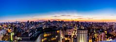 Concrete jungle pano - Sao Paulo, Brazil (Andre Yabiku) Tags: panorama concretejungle saopaulo sãopaulo brazil brasil br southamerica andreyabiku yabiku copan copanbuilding sunset bluehour