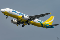 Cebu Pacific Air - Airbus A320-214 / RP-C3268 @ Manila (Miguel Cenon) Tags: cebupacific cebupac cebpac ceba320 rpll planespotting ppsg philippines plane 5j airplanespotting airplane apegroup appgroup airport airbus airbusa320 a320 manila nikon naia d3300 narrowbody wings wing window flying fly winglet twinengine aircraft aviation sky tree cockpit building rpc3268