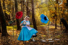 Alice in Wonderland (blackietv) Tags: alice aliceinwonderland blue white dress petticoat apron tgirl crossdresser crossdressing transgender costume cosplay outside