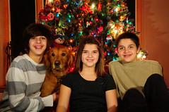 card (j.symington) Tags: 2012 christmas