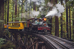 Train of Thought (Dancing.With.Wolves) Tags: steam power train redwoods thoughts hike destination bridge colors winter cold clouds fog old people humans ride vacation watch out barrels 2019 california
