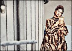 ► ﹌Premiers flocons ...﹌◄ (яσχααηє♛MISS V♛ FRANCE 2018) Tags: fashion shopping blog style blogger minimal sl secondlife virtual blogging bento styling designers saltpepper slfashionblogger secretposes france girl glamour flickr modeling marketplace fashionista firestorm fashionable glamourous fashionindustry maitreya fashionstyle fashiontrend lesclairsdelunederoxaane lesclairsdelunedesecondlife art photography photographer artistic avatar event poses tannenbaum topmodel posemaker roxaanefyanucci