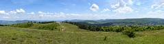 Nagyszénás (deakb) Tags: nikon nikkor d500 2470 f28 magyarország hungary buda hills green blue nagyszénás panorama