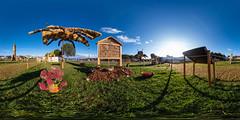 360° | Strohpark 2019 - Bienen (hapePHOTOGRAPHIX) Tags: 276baw 276deu 360x180 360° alemania allemagne badenwuerttemberg badenwürttemberg deutschland equirectangular europa europe germany landkreissigmaringen ricohthetaz1 schwenningenheuberg vrpanorama hapephotographix schwenningen