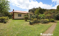 3 Frond Drive, The Patch Vic
