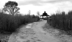 Way to the Beach (Anthony Mark Images) Tags: waytothebeach path dunes dunegrass fences gazebo baretrees sand lamps cloudy blackandwhite monochrome grandbend ontario canada nikon d850 flickrclickx