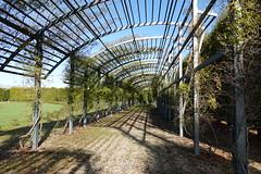 Giardino delle Rose @ Garden @ Reggia di Venaria Reale @ Turin