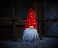 Arriva la magia del Natale nelle finestre di Borgo Arnosto (ornella sartore) Tags: borgo arnosto finestra gnomo natale colori particolari allaperto canon