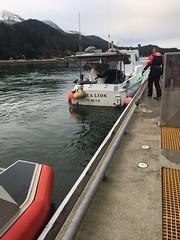Coast Guard responders search along Gastineau Channel, Alaska (Coast Guard News) Tags: sar search personinthewater juneau douglasisland shorelinesearch aircrew boatcrew mh60 unmanned adrift distress response alaska unitedstates piw