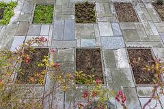 Facade (verblickt) Tags: austria waldviertel monestry garden