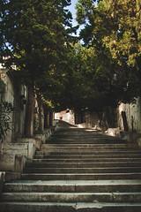 Šibenik, Croatia (pas le matin) Tags: travel voyage world stairs escalier marche croatie croatia hrvatska europe europa sibenik šibenik trees arbres canon 7d canon7d canoneos7d eos7d