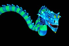 Electric Dragon (Nige H (Thanks for 25m views)) Tags: dragon electricdragon lantern light longleat longleatlanterndisplay