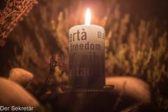Freiheit --- Freedom (der Sekretär) Tags: ai amnestyinternational detail feuer flamme gewächs kerze kerzen pflanze stein tiefenschärfeschriftzug candle candles closeup fire flame growth plant stone