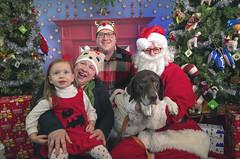 29_b_Django (Salty's Pet Supply) Tags: santa photo holiday christmas xmas dog dogs cat pets fang portland pdx oregon charity pongo matthowl nancyfedelem christmasstory backdrop iphone canon iphonography portrait community