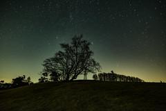 Raßberg (clemensgilles) Tags: bäume trees starlight astrophotography nachthimmel beautiful deutschland etoiles estrellas nightphotography longexposure stargazing astrofotographie astrophotographers rheinlandpfalz eifel germany