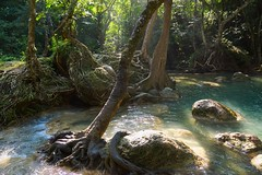Pool at the Erawan waterfall in Kanchanaburi, Thailand (UweBKK (α 77 on )) Tags: kanchanaburi province thailand southeast asia sony alpha 77 slt dslr erawan waterfall nature reserve park water flow tree forest jungle stone rock outdoors