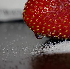 Food Challenge 2 (Corgibird) Tags: foodpornbonbonschocolatescocoaboxofchocolatessweets patries pastries sugar sweets holidays yum flour foodporn strawberries