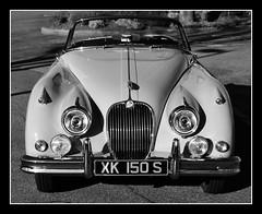 Jaguar XK150 S (@GilAegerter / klahini.com) Tags: monochrome blackandwhite blackandwhitephotography manualfocus manuallens nikon nikkor jaguar oldcars d5500 18200mmf3556gafsvrii