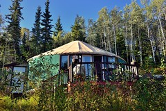 If One Is Going to Stay in Alaska, One Might As Well Enjoy a Few Nights Living in a Yurt! (thor_mark ) Tags: airbnb alaska2019 alaskaintermountainranges alaskayukonranges azimuth35 blueskies capturenx2edited colorefexpro day2 deck deluxemountainyurtgetaway evergreentrees evergreens imagecapturewitharsenal landscape lookingne nature nikond800e northfairbanksarea outside project365 stairs sunny talltrees talltreesallaround travel trees witharsenal woodendeck woodenstairs yurt fairbanks alaska unitedstates