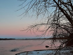 pink sky (angelinas) Tags: pinksky lanature riverscape rivers riverside trees sky paysages paesaggio outdoors canada quebec snow mood dusk crepuscules color reflections