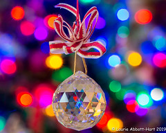 -20191130Sparkle4-Edit (Laurie2123) Tags: christmas2019 laurieabbotthartphotography laurietakespics laurieturner laurieturnerphotography laurie2123 odc odc2019 ourdailychallenge swarvskicrystal bokeh