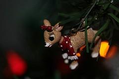 Christmas 2019 045 (Chrisser) Tags: christmas decorations decoration ontario canada canoneosrebelt6i canonefs60mmf28macrousmprimelens specialholidays lens00025 digital