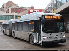 Winnipeg Transit #387 (vb5215's Transportation Gallery) Tags: winnipeg transit 2019 new flyer xd60 xcelsior