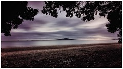 Pohutukawa framed shot of Rangitoto Island (cjhall.nz) Tags: wideangle longexposure tokina1120 canonr newzealand auckland northshore seascape landscape sand pohukawa firstlight dawn daybreak sunrise ocean harbour waitemata sea beach takapuna