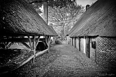 The Path (Alfred Grupstra) Tags: thatchedroof cultures old oldfashioned hut ruralscene history village blackandwhite retrostyled obsolete straw house roof antique outdoors cottage woodmaterial architecture nonurbanscene farm