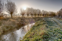Frosty Morning light (enneafive) Tags: cold frost meadow wellen belgium limburg walk sun creek trees water grass ice sky fujifilm xt2 affinityphoto deherk walkingtrail