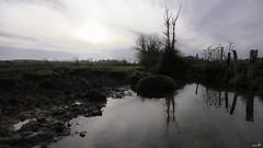 Entre-deux-Eaux (Un jour en France) Tags: canoneos6dmarkii canonef1635mmf28liiusm eau rivière bocage arbre ciel campagne nature sky soleil cielpaysage paysage landscape groupenuagesetciel