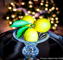 -20191130Lovely Lemon2-2-Edit (Laurie2123) Tags: nikond800 laurieturner laurie2123 laurieturnerphotography christmas2019 laurietakespics laurieabbotthartphotography godoxad200 fruit crystal bokeh odc ourdailychallenge odc2019 reflection offcameraflash lemon