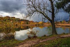 Novembre 2019  en Savoie (gerardcarron) Tags: arbres automne autumn canoneos80d ciel cloud eau lacstandré landscape lesmarches nature nuages paysage savoie water