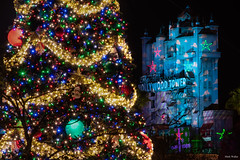 The Tower and a Tree (mwjw) Tags: disney disneyworld orlando florida wdw hollywoodstudios mwjw markwalter nikond850 night nightshot longexposure towerofterror nikon24120mm christmas